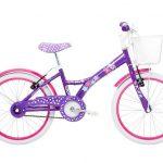 Bicicleta Aro 20 quadroAço My Bike com cestinha Tito Bikes