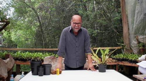 Curso Online para Cultivar Orquídeas com o professor Alberto Schuman